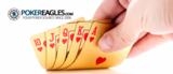 Premium thumb fc940472 eb2b 434d b7ca 763b1da78042