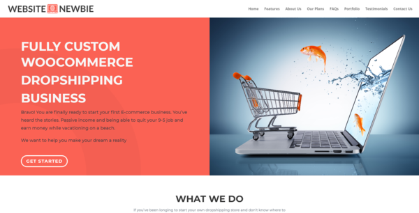 WebsiteNewbie.co - Web Design Agency, Newbie Friendly, Fully Outsourced, Net Profit - $548 per/mo