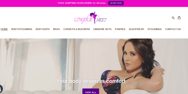 Lingerie Meet - LINGERIE Dropship Store-Fully Automated Store-Big Niche-Pro Design-Newbie Friendly-$1.5KBIN Bonus-Anybody Can Do From Anywhere In World