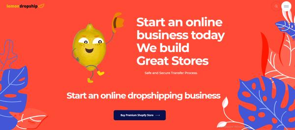 lemondropship.com - Premium Ecommerce & Dropship Agency Sell Websites - Potential Earn up to 5k$/mo
