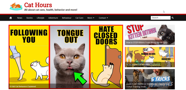 CatHours.com - Fully Automated Cat News and Care Site - 1 Year Free Hosting BIN + Great Bonuses