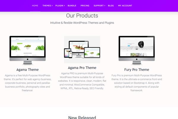 theme-vision.com - Marketplace / Internet