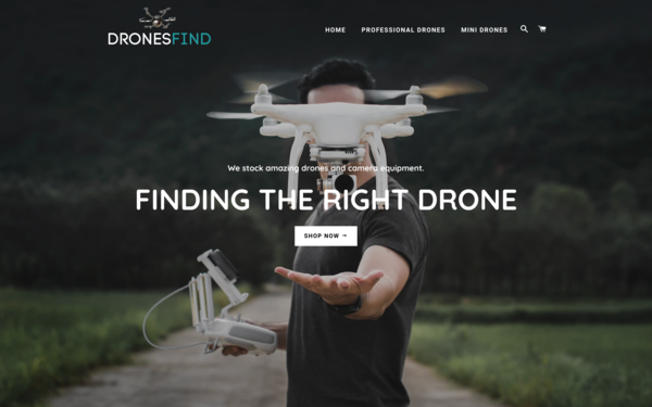 DronesFind.com - DronesFind.com| Drones Dropshipping Store | Domain Value $1,328|Newbie Friendly