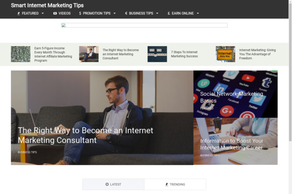 SmartInternetMarketingTips.com - Hot Niche! - Internet Marketing Blog - Amazon/Clickbank Ads! - BIN Bonuses!