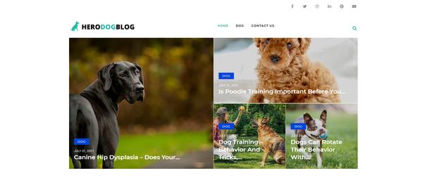 herodogblog.com - Dog Blog with Unique Content 12,000 + Words. Get Organic Traffic.
