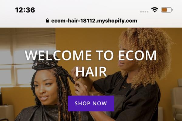 ECOM HAIR (Drop Shipping Hair Business) - Drop shipping hair bundle/extensions Shopify store