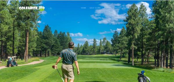 golfarise.com - Amazon Affiliate Website Making 51$/Pm In Golf Niche & Google AdSense Approved