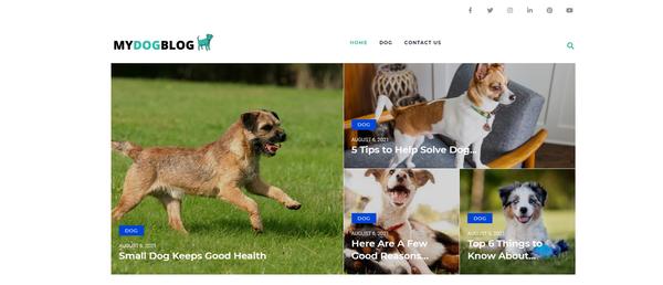 mydogportal.com - Dog Blog with Unique Content 12,000 + Words. Get Organic Traffic.
