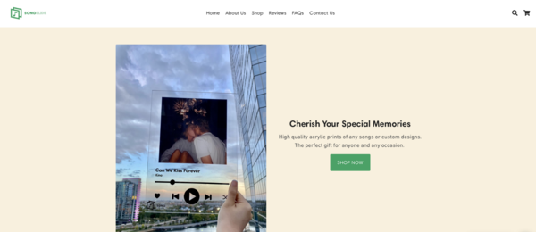 songslide.co - $460k Revenue - Print On Demand -  Shopify Music Brand