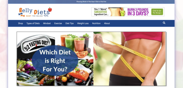 BellyDiets.com - High Converting HOT Diet Niche - Premium Design - 100% Fully Automated - FAST