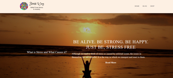 StressWay.com - Stunning Premium Aged Domain In The Stress Niche Customized Wordpress Theme