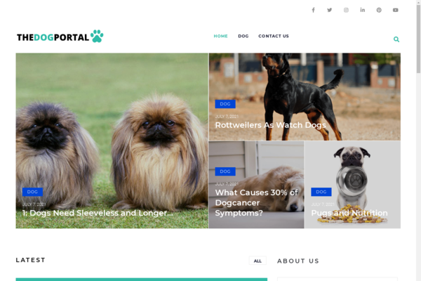 thedogportal.com - Dog Blog with Unique Content 12,000 + Words. Get Organic Traffic.