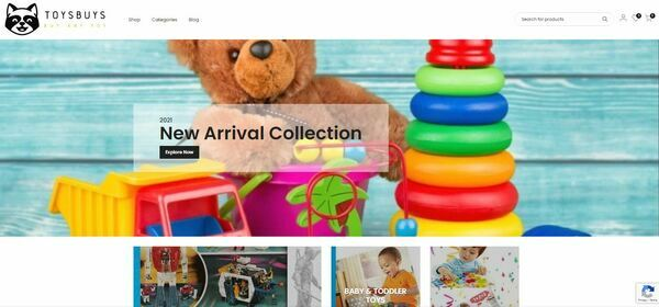 Toysbuys.com - Premium Automated Toys Store - DropShipping Business - Maintenance Free