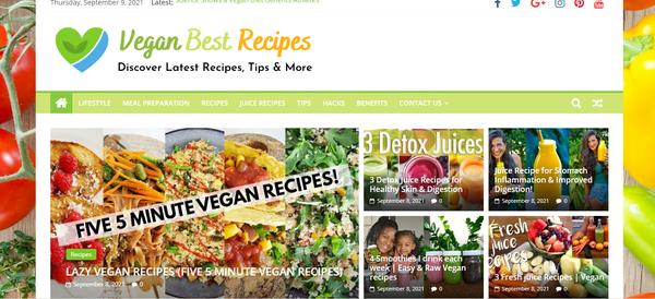 VeganBestRecipes.com - Popular Vegan Niche - Killer Design - Fully Automated - BIN bonuses