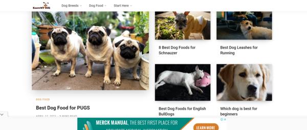 knowmydog.com - Long Term Profitable Dog Niche Amazon Affiliate Website With 71 Unique Articles