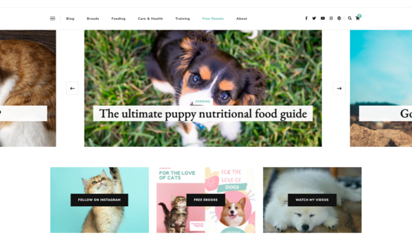 My Blissful Pet - A cat and dog niche website fully set up with 29 published articles, beautiful photos, social media accounts and awesome ebooks to grow your business today!