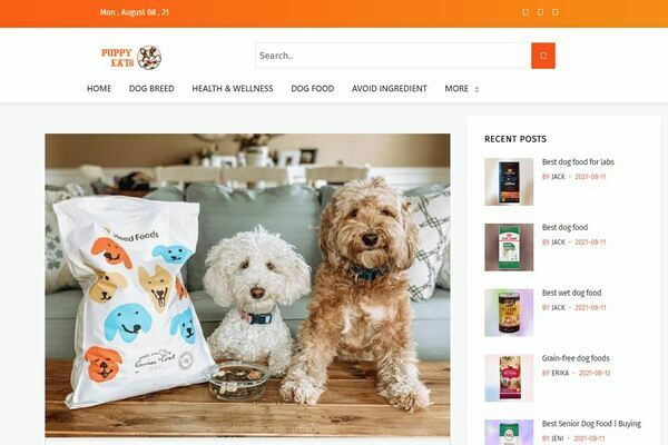 puppyeats.com - Amazon Affiliate Site Based on  Puppy Foods.