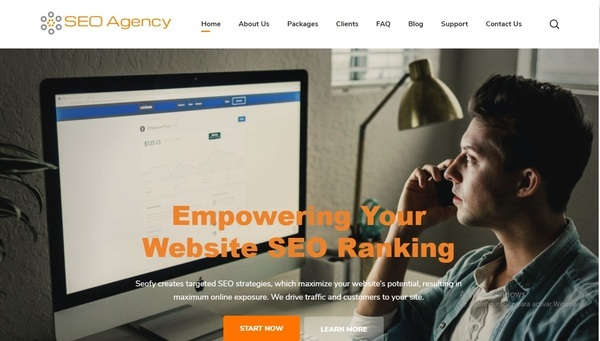 interactiveseoagency.org - SEO Agency, Free Leads $3,000 Potential, 4.5K Backlinks 8-yrs Domain-NO RESERVE!