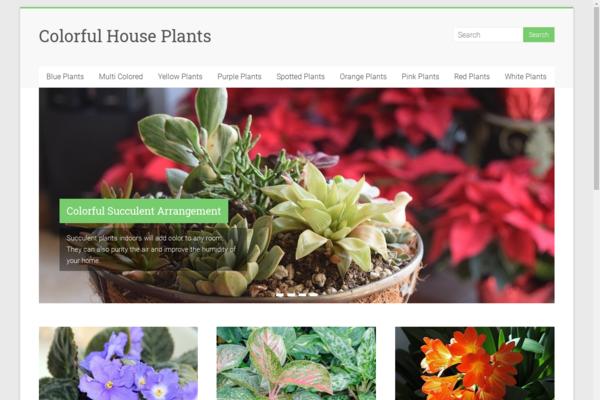 colorfulhouseplants.com - Colorful House Plants