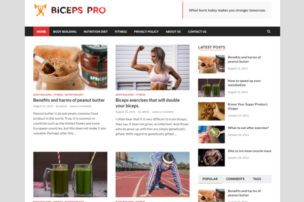 bicepspro.com - Bicepspro.com is a beautifully designed website based on health & fitness.