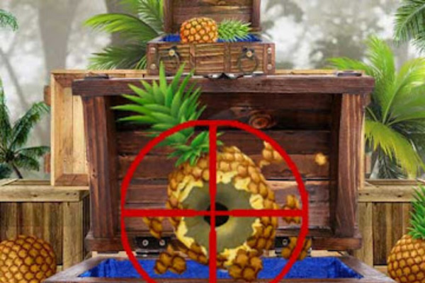 Pineapple Shoot Games 3D - Android Mobile Game for sale   Pineapple Shoot Games.