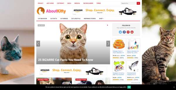 AboutKitty.com - Automated Cat Niche Blog To Make Money Online from Amazon Affiliate Program