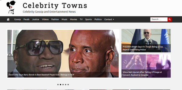 CelebrityTowns.com - Celebrity News & Gossip - Fully Automated - Amazon & Ad Income - BIN Bonus
