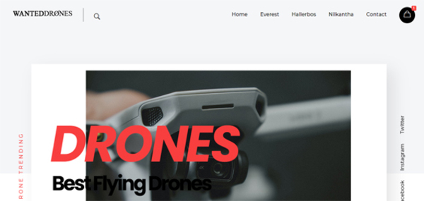 wanteddrones.com - WantedDrones.com Drones Dropshipping Store with Exceptional Growth Potential.
