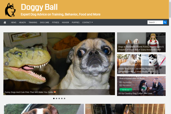 DoggyBall.com - Fully Automated Dog News Website. Get 5 Automated Websites worth over $900