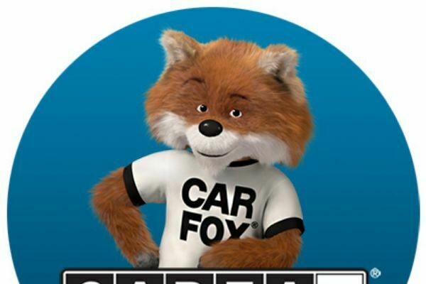 cheapcarfax.net - Fully automated business, you're simply required to answer live chat and queries