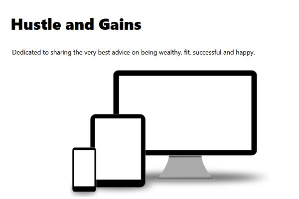 hustleandgains.com - A new website originally destined to be a blog and promote affilate marketing