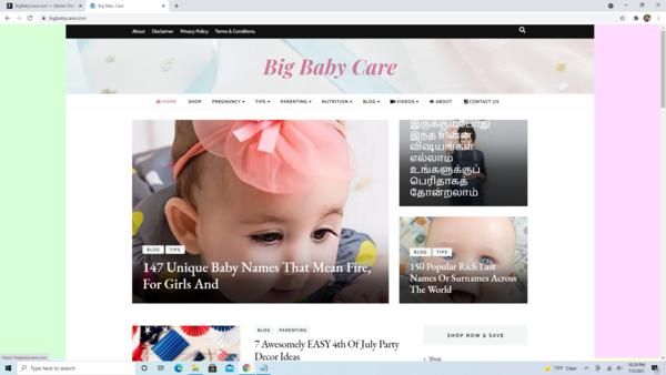 BigBabyCare.com - High Converting Hot Baby Niche - Premium Design - 100% Fully Automated