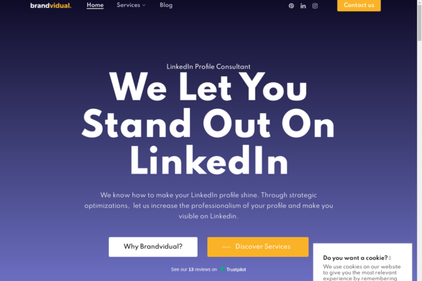 brandvidual.com - brandvidual.com   Established LinkedIn Business Service Agency For Individuals