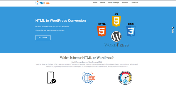 netfine.xyz - #Monthly Net Profit $750. HTML to WordPress Webdesign Service Selling Business#