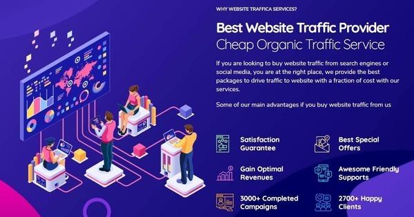 websitetraffica.com - Premium Website Traffic and SEO Services | High profit margin | Proven Revenue