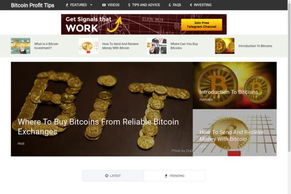 BitcoinProfitTips.com - Hot New Niche! - Bitcoin Cryptocurrency Blog - Amazon Ads! - BIN Bonuses!