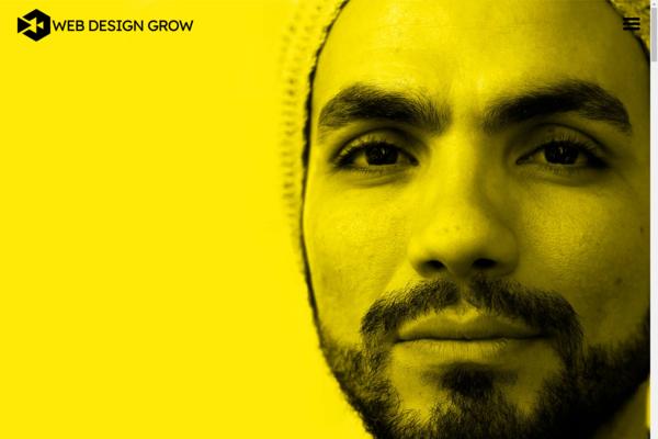 WebDesignGrow.com - Full Service High Quality Web Design Reseller Business. High Profit.