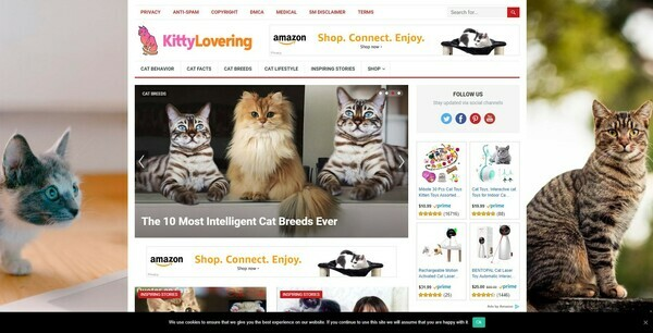 KittyLovering.com - Automated Cat Niche Blog To Make Money Online from Amazon Affiliate Program
