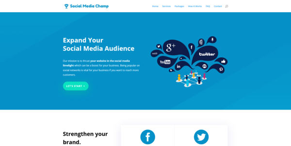 SocialMediaChamp.co - PROFITABLE SOCIAL MEDIA BIZ - Made $3920 in 3 Months. Recession Proof Biz