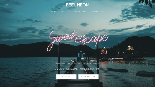 feelneon.com -  FEELNEON.COM - Shopify-based drop-shipping store selling neon wall decor.