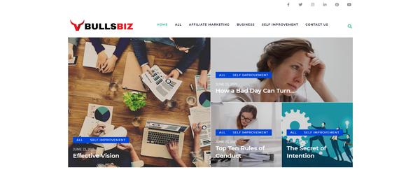 bullsbiz.com - Business Blog with Unique Content 11,000 + Words. Affiliate Marketing, Ads &...