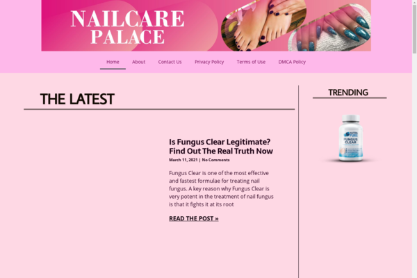 nailcarepalace.com - One Year Old Website Making $350/M Last Four Months With 100% Organic Traffic