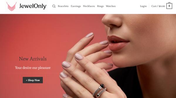 JewelOnly.com - JewelOnly.com automated Jewelry dropshiping store worth+$1400-Noreserve