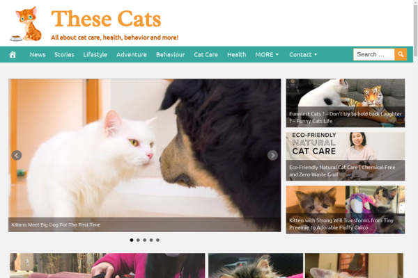 TheseCats.com - Fully Automated Cat News Website. Get 5 Automated Websites worth over $900