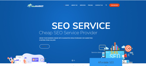 nicemarket.xyz - Monthly Net Profit $700+   SEO Service Selling Business   100% Outsourced