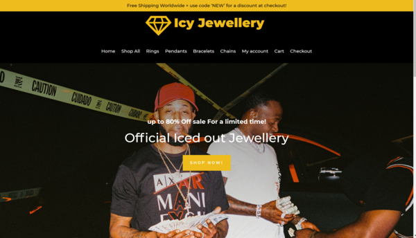 Icy Jewellery - $1000 + DOMAIN NAME! Huge Potential Jewellery Drop shipping website! Selling Jewellery, Chains, Rings, Pendants!  AMAZING SEO! LOTS OF ORAGNIC TRAFFIC!