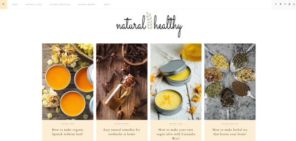 gonaturalgohealthy.com - Starter Site for sale in Natural & Healthy Living niche