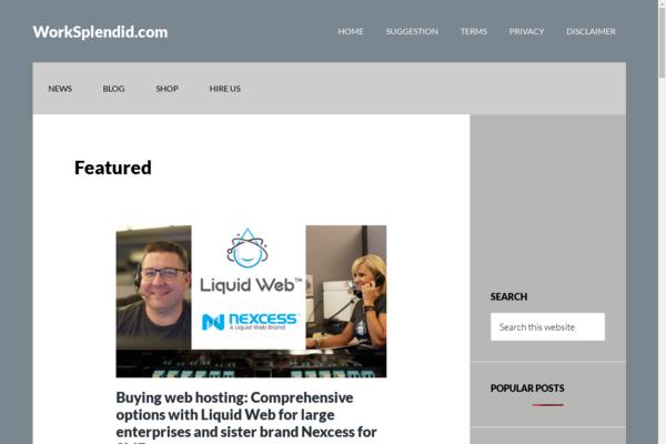 worksplendid.com - AdSense approved website monetized by affiliate marketing for sale