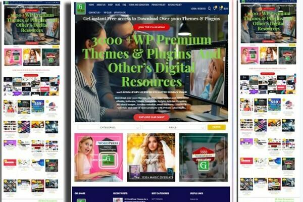 digitalproductvalley.com - Established Professional  Digital Products selling membership website