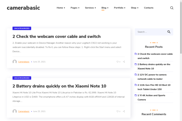 CameraBasic.com - Wordpress Camera niche with 500 Blog posts, Gets 100% organic Traffic